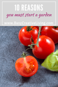 10 Reasons you Must Start a Garden - The Busy Creative