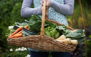 Woman with garden basket. 10 Money saving home garden crops